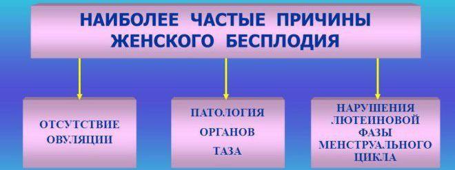 Как определить отсутствие овуляции