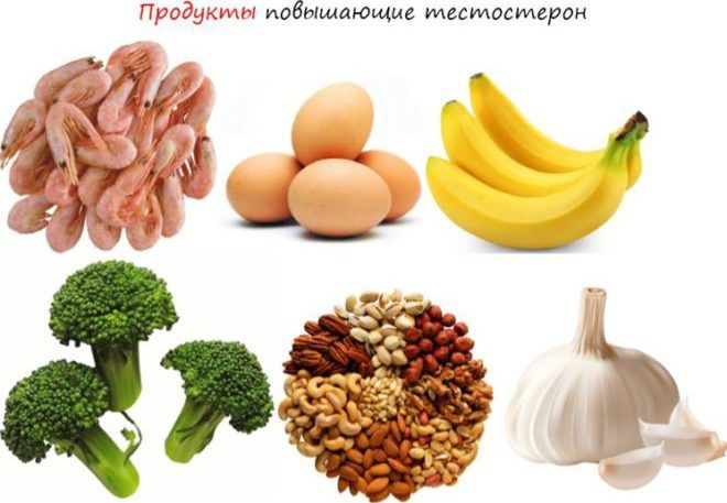 Продукты содержащие тестостерон