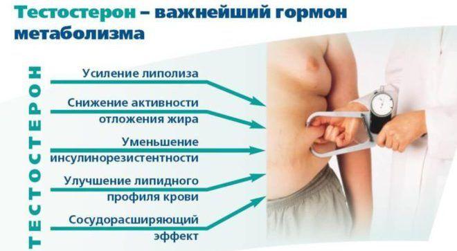 Вільний тестостерон у жінок і чоловіків: норма, як здавати аналіз? » журнал здоров'я iHealth 2
