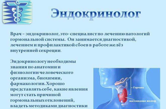 Врач – эндокринолог