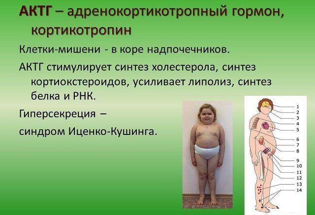 gruppovoy-seks-znakomstva-ru