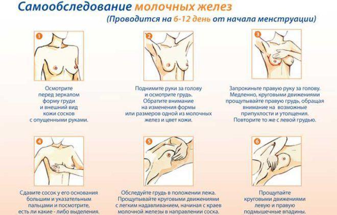 Cамообследование молочных желез