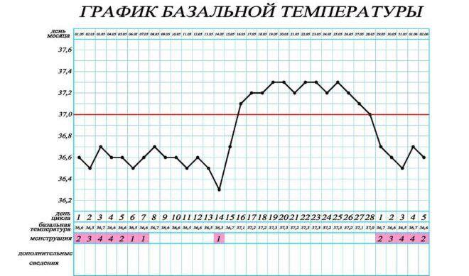График базальной температуры при месячных