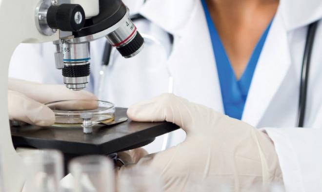 какие анализы сдать от паразитов
