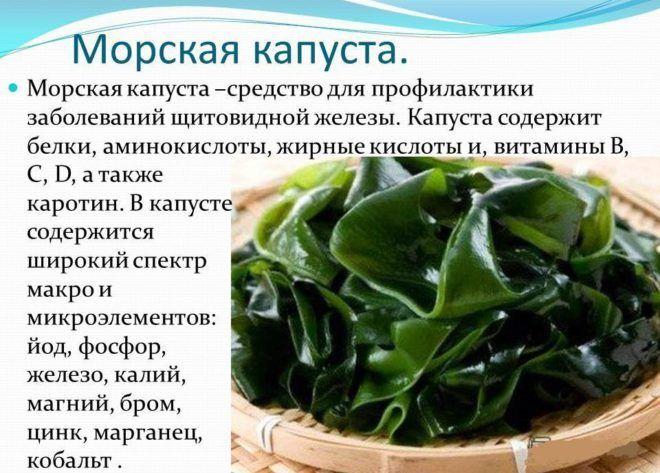 Лечение морской капустой