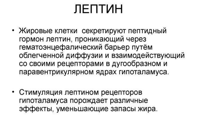 Лептин