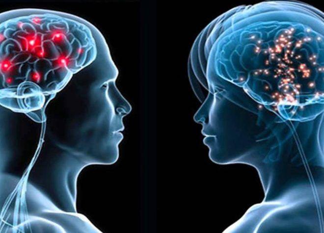 Различия мужского и женского восприятия