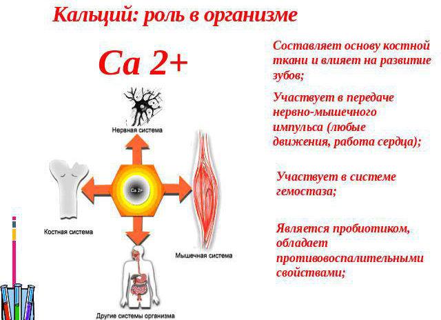 Уровень кальция в крови