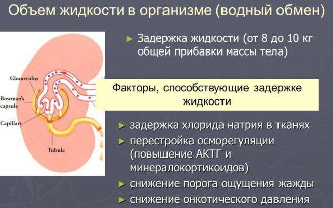 Задержка жидкости в организме женщины
