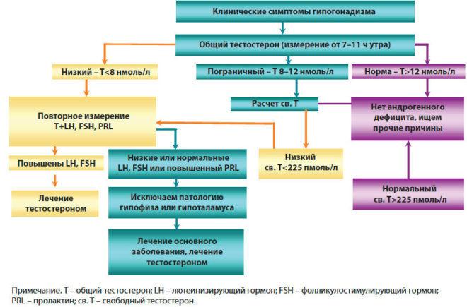 Алгоритм диагностики и лечения гипогонадизма у мужчин