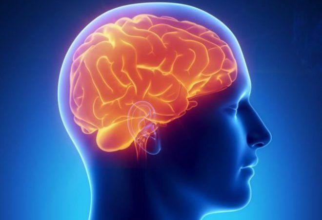 программы для улучшения мозга