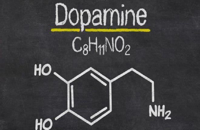 Дофамин гормон