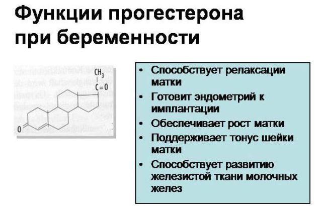 Функции прогестерона при беременности