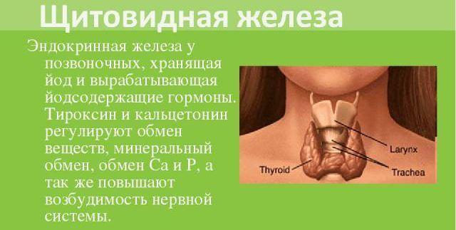 Йодсодержащие гормоны