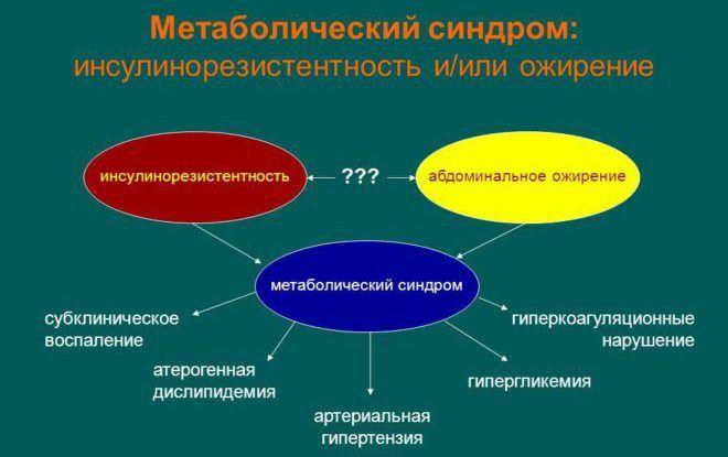 Метаболический синдром, описание