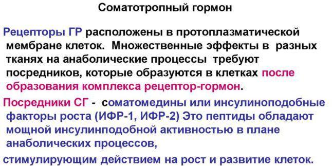 Нормальная концентрация соматотропного гормона