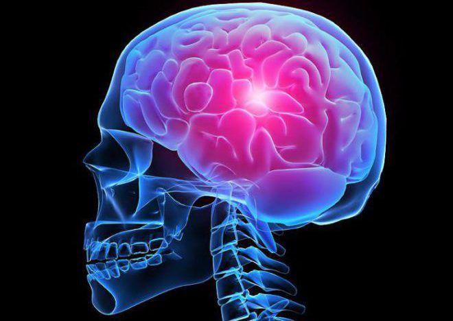 Отклонение гипофиза головного мозга