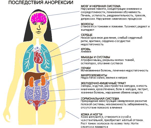 Последствия нервной анорексии