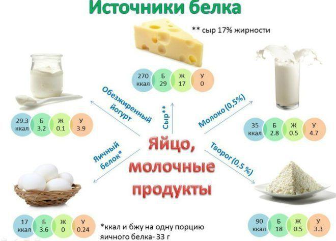 Продукты содержащие белок