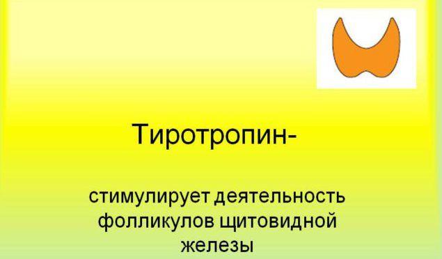 Тиротропин