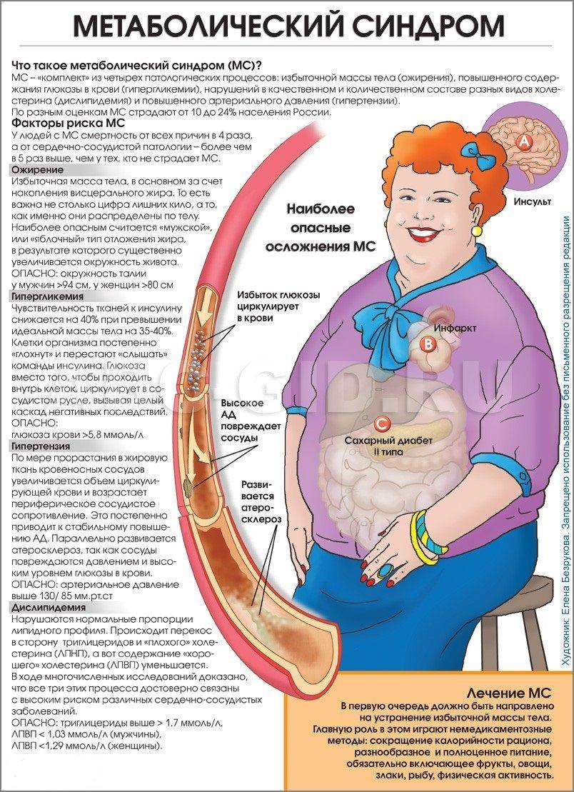 Метаболический синдром — что это такое, лечение и патофизиология 2