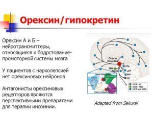 Гипокретин